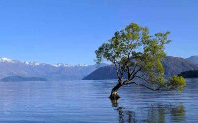 Wanaka Nuova Zelanda