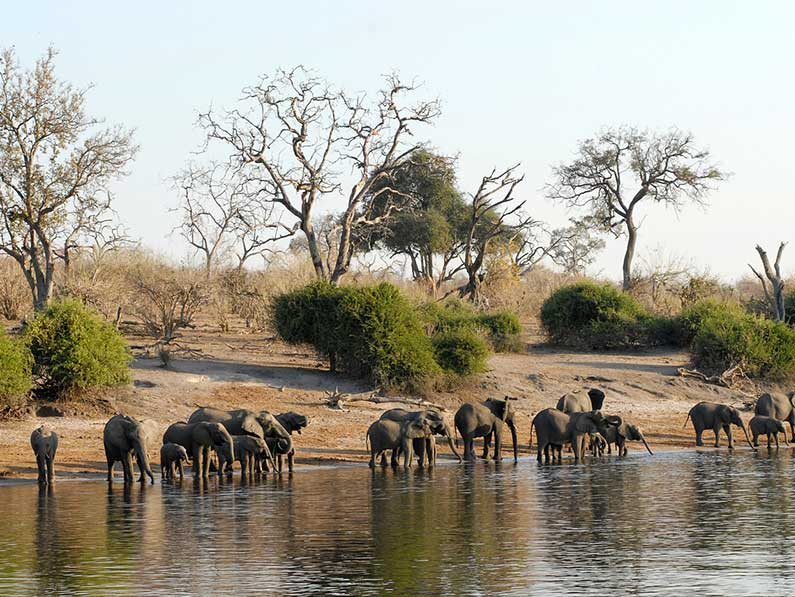 More Game Reserve